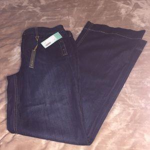 NWT Level 99 for Stitch Fix Arya Wide Leg Jean 31
